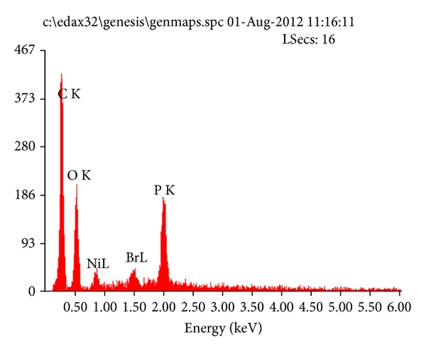 386903.fig.006