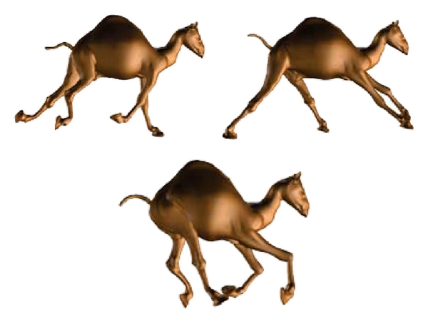 (a) Original camel animation model (with 43813 triangles)
