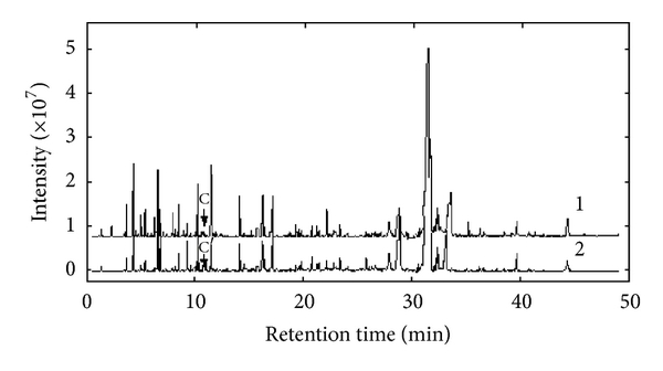 246986.fig.007