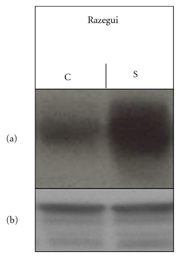 737035.fig.002