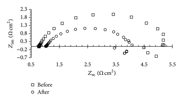 538462.fig.004