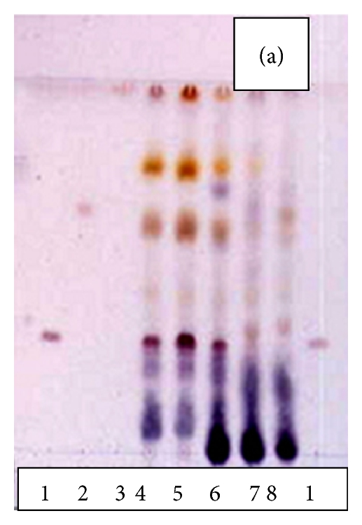 573070.fig.003a