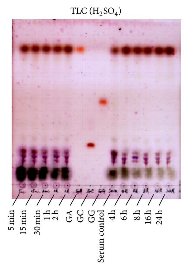 573070.fig.004a