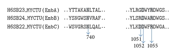 601270.fig.002
