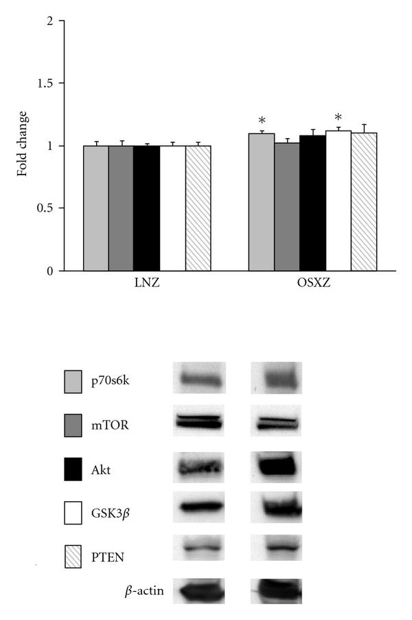 384683.fig.001