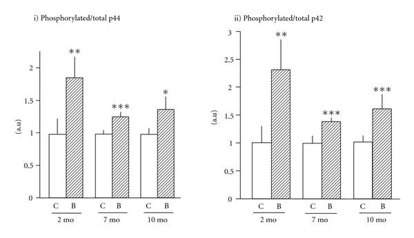 (e) Ratio of phosphorylated p44 and p42