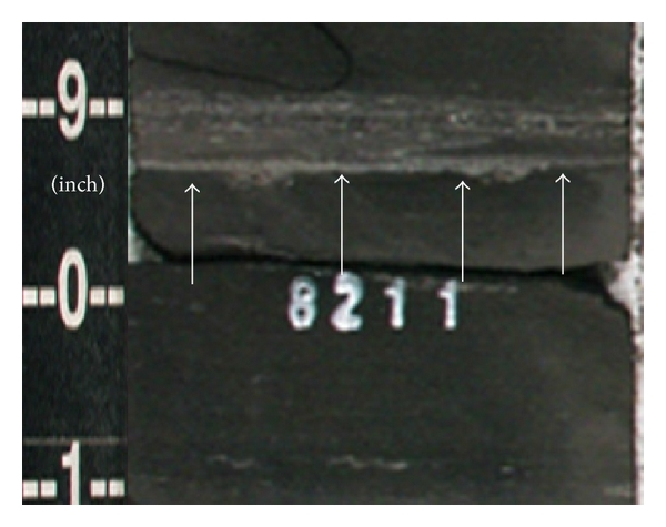759395.fig.008a