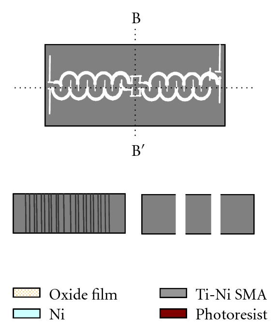 (f) Etching of photoresist and Ni