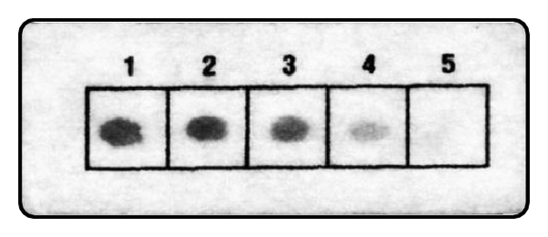 936542.fig.003