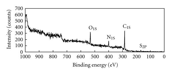 (b) The wide scan for Ppy-PVS oxidised film at the electrode side