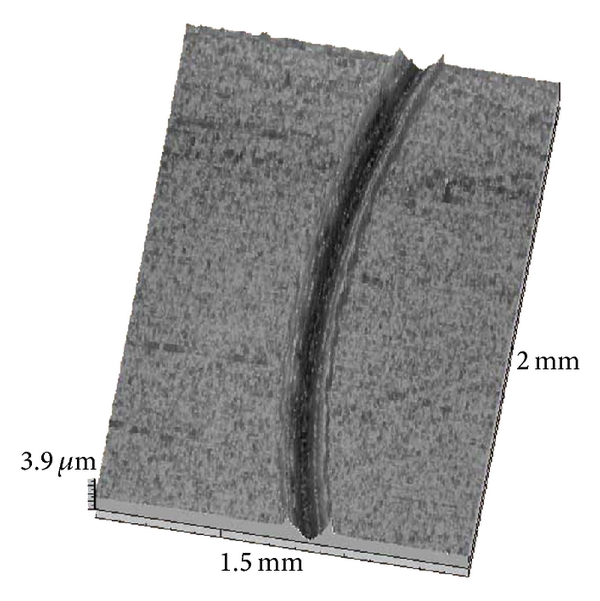 731073.fig.005a