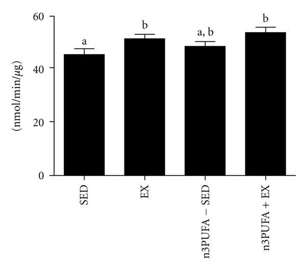 (e) Citrate synthase activity