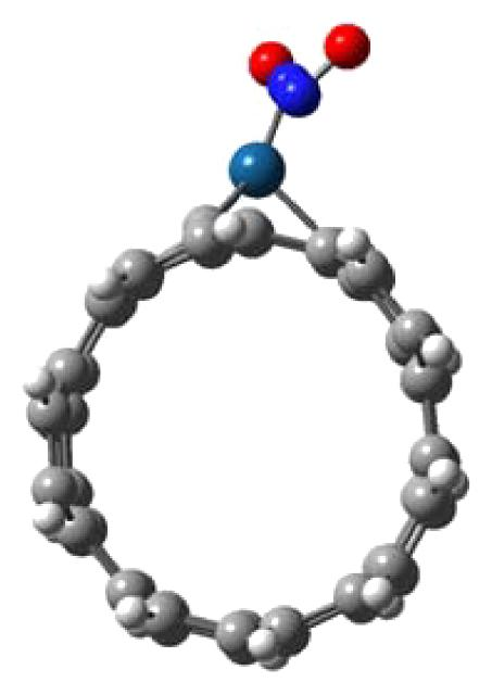 (a) Side view of (NO)2-adsorbed Pt-doped SWCNT perpendicular to the nanotype axis