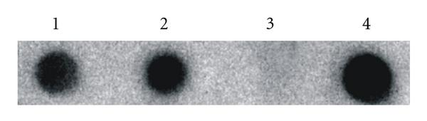 680790.fig.003