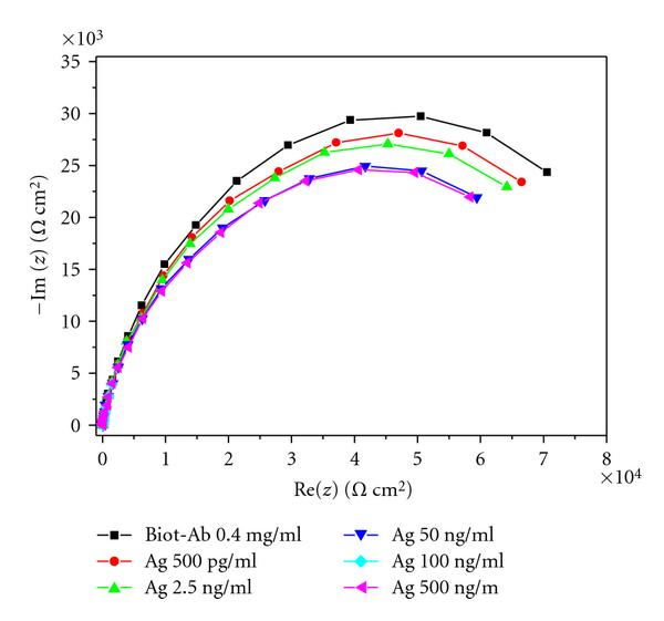 (b) Detection using system 2 based on iron oxide nanoparticles
