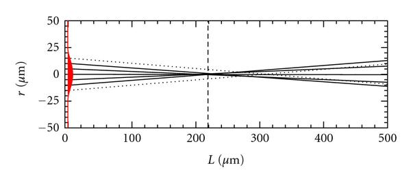 (b) Light path of collimated beam from etched fiber tip in PBS