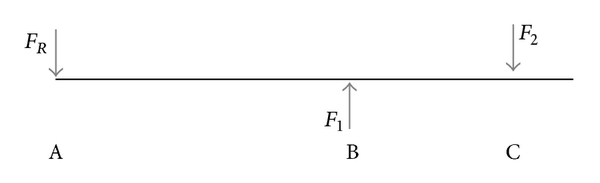 (b) The free body diagram of the forces acting perpendicularly along the needle