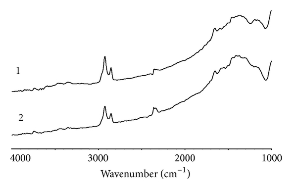 925705.fig.004
