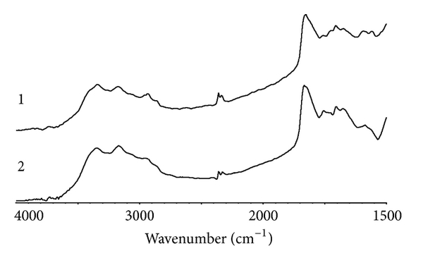 925705.fig.005