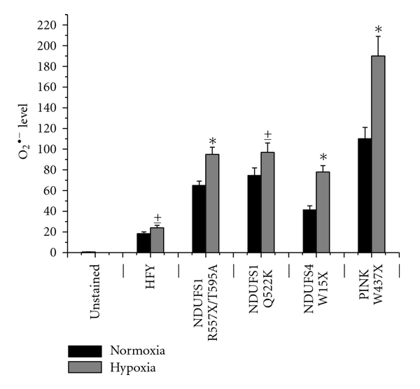 (a) Fibroblasts were cultured in low glucose serum-free medium for 24 hours in normoxic or hypoxic condition (1% O2) and then incubated with 5 μM Mitosox for 10 minutes at 37°C for detection of oxygen superoxide. A flowcytometer analysis was then performed. The results are representative of three experiments with similar results. *    𝑃 < 0 . 0 0 5     hypoxic fibroblasts versus normoxic fibroblasts