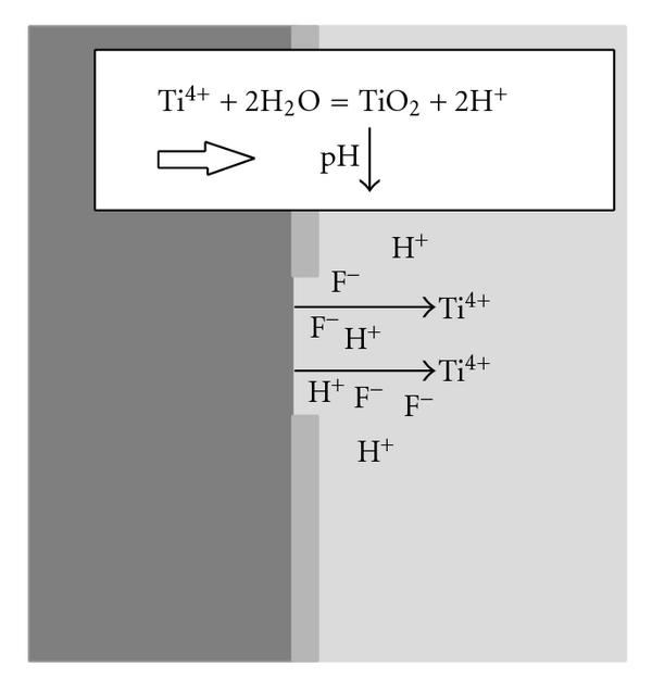 (b) Then pH changes at the very initial stage after irradiation.