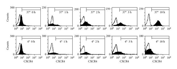 (a) Surface expression of CXCR4 on human granulocytes freshly isolated (0 hours) and cultured at 37°C (1 hour–18 hours) is shown, as measured by flow cytometry. Fluorescence histograms of a representative experiment are shown. Neutrophils which were kept at 4°C to prevent aging served as an additional control