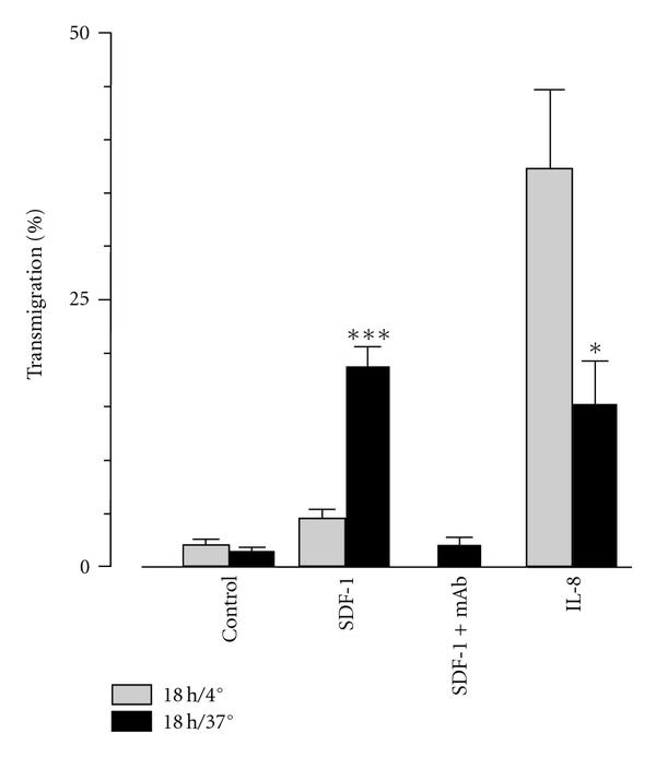 (b) SDF-1- and IL-8-induced transendothelial migration of neutrophils cultured for 18 hours at 37°C compared to cells kept for the same time period at 4°C to prevent aging. The influence of aging in vitro on the migratory response to the chemokines was  statistically significant (SDF-1 ***  , 37°C versus 4°C and IL-8*  , 37°C versus 4°C). For functional blocking of CXCR4 in aged PMN (18 hours/37°C), the 12G5 antibody was used. Control: spontaneous migration without chemokines