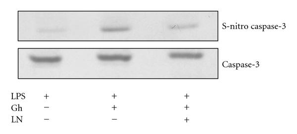 280464.fig.008