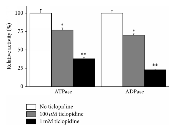 (a) Mouse NTPDase1