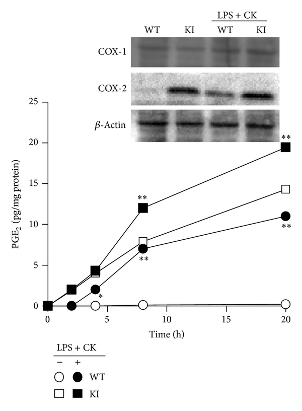 832103.fig.001a