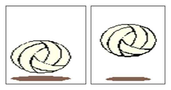 (b) Two Shift variant images