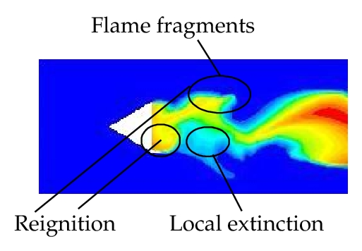 (b) Local extinction and reignition