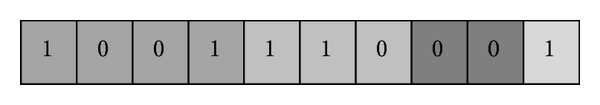 (c) Chromosome based on adjacency matrix
