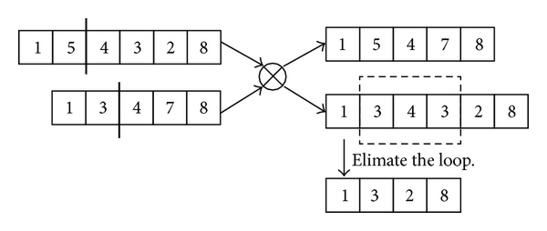 (c) Repair the loops generated in crossover operation