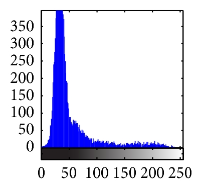 (f) Histogram of (a)