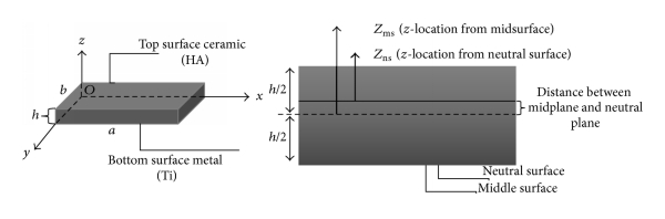 371462.fig.002