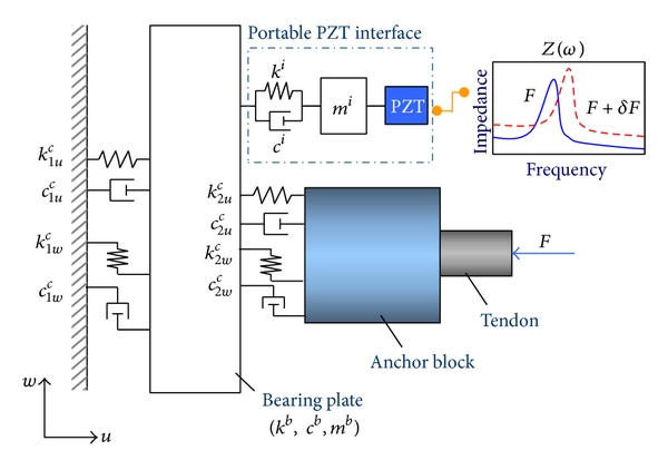 (b) Analytical model of cable-anchorage subsystem