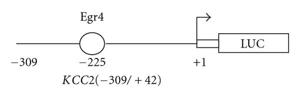 641248.fig.002a