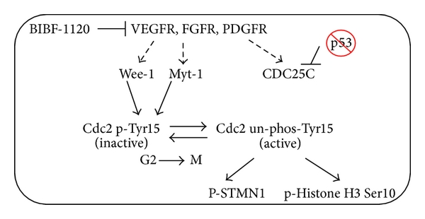 828165.fig.007a