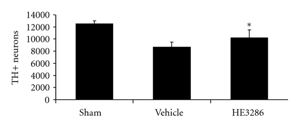 969418.fig.005