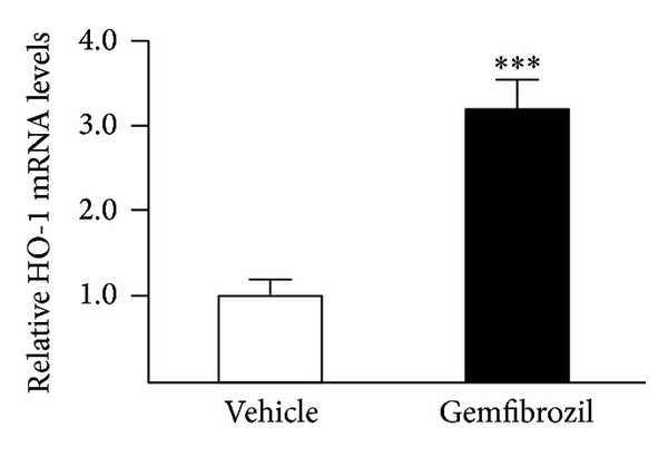 747014.fig.001a
