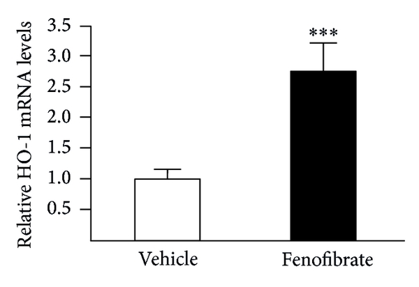 747014.fig.002a