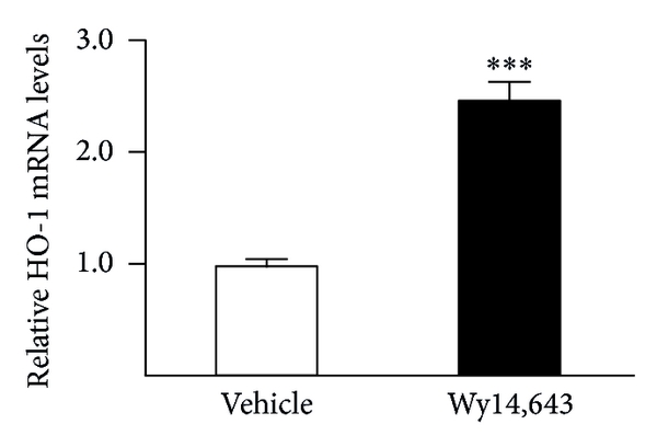 747014.fig.003a
