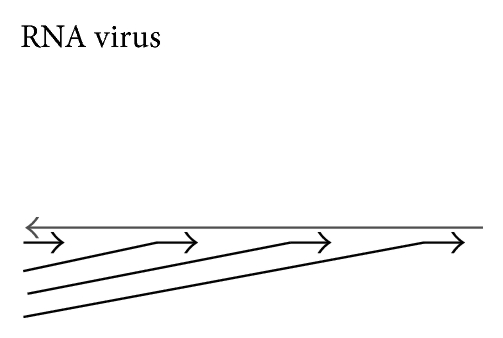 783253.fig.002a