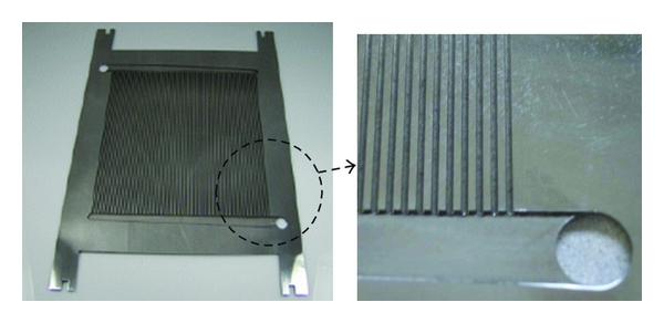 (a)  Primary flow plate