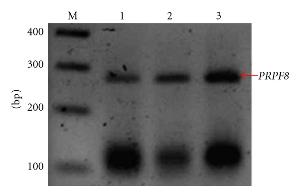 236427.fig.001a