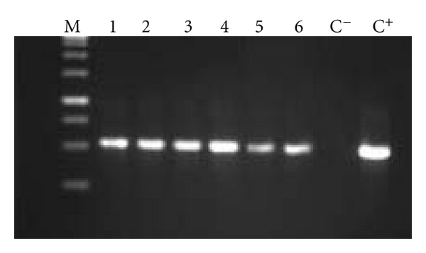439870.fig.002a