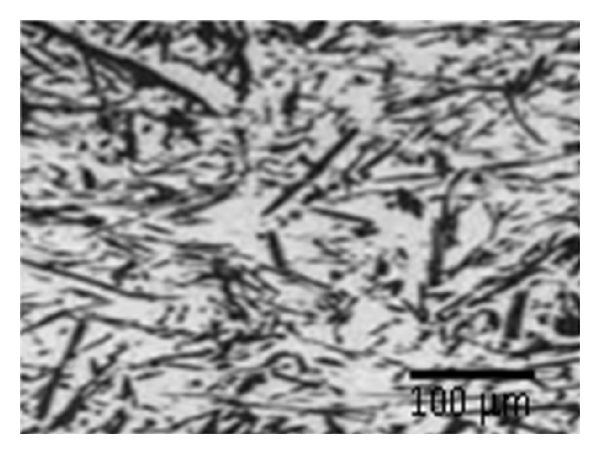 250513.fig.001a