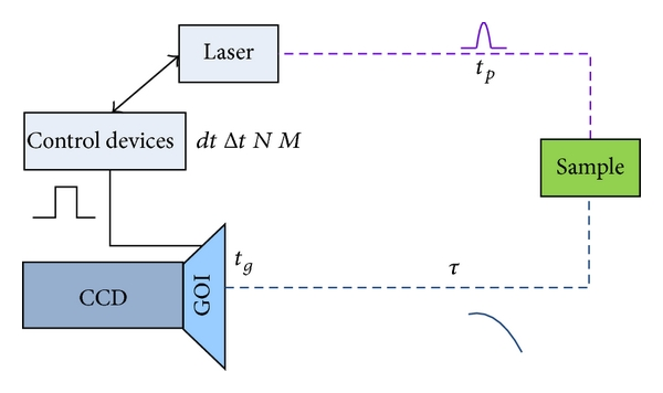 (b) Abstract model of time-gated FLIM systems