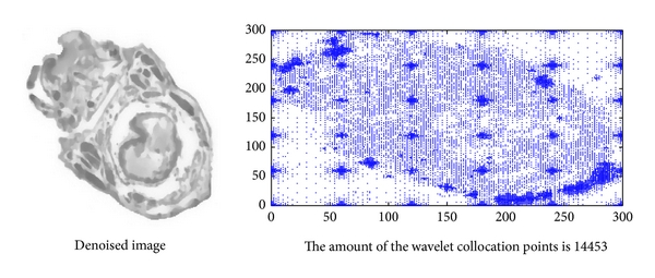 (a) Static interval wavelet (  )